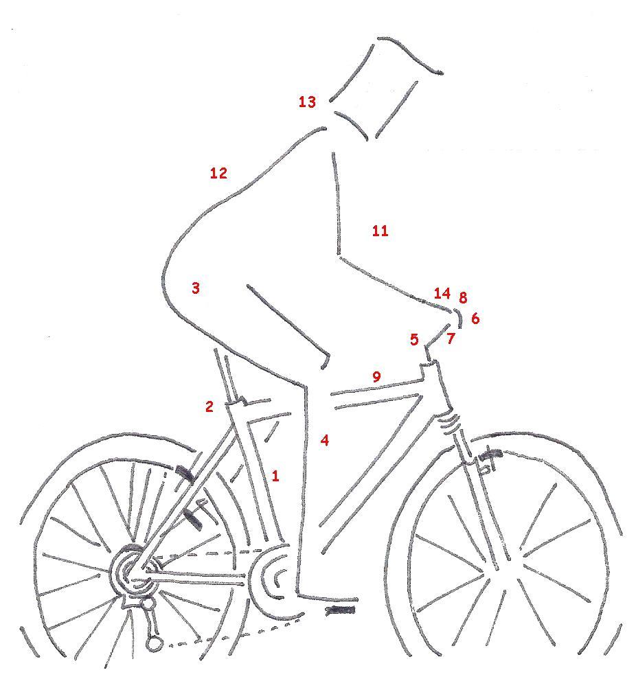 Ponte cómodo en la bicicleta   Melilla ConBici